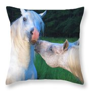 The Challange Begins Throw Pillow