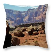 The Challenges Ahead Throw Pillow
