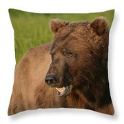 The Chew 2 Throw Pillow