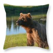 The Chew 3 Throw Pillow