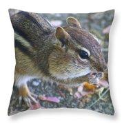 The Chipmunk Throw Pillow by Danielle Allard