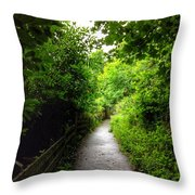 The Cliff Path At Lynton 4 Throw Pillow