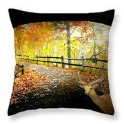Under The Cobble Stone Bridge Throw Pillow