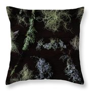 The Collection Of Lichens Throw Pillow