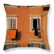 The Color Of Drying Throw Pillow