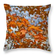 The Color Of Fall 1 Throw Pillow