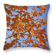 The Color Of Fall 2 Throw Pillow