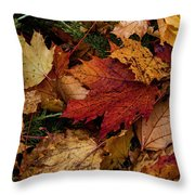 The Color Of Fall Throw Pillow