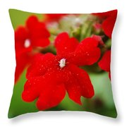 The Color Of Love Throw Pillow