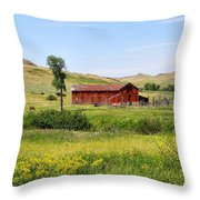 The Color Of Montana Throw Pillow