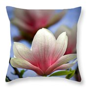 The Color Of Spring Throw Pillow