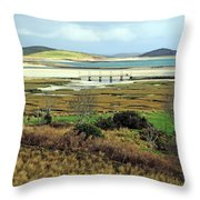 The Colors Of The Bay Throw Pillow
