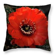 The Color Red Always Makes Smile Throw Pillow