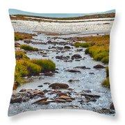 The Colorado Tundra Throw Pillow