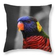 The Colorful Bird Throw Pillow