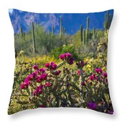 The Colorful Desert  Throw Pillow