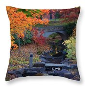 The Colors Of Fall Throw Pillow