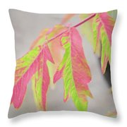The Colors Of Shumac 2 Throw Pillow