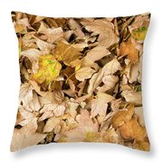 The Colors Of The Leaves In Autumn Throw Pillow