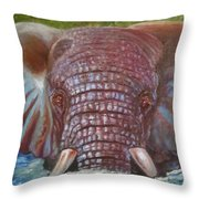 The Colour Of Life Throw Pillow
