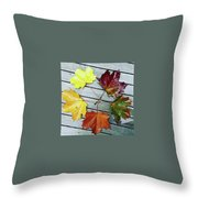 The Colours Of Autumn Throw Pillow