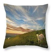 The Colours Of The Evening Throw Pillow by Angel  Tarantella