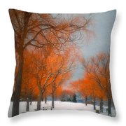 The Colours Of Winter Throw Pillow