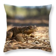 The Common Toad 4 Throw Pillow