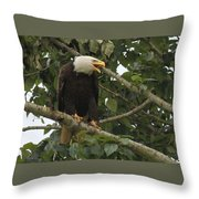 The Complete Stare Throw Pillow
