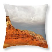 The Condor's Land Throw Pillow by Christine Till