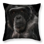 The Contender Throw Pillow