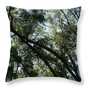 The Contours Of Refuge Throw Pillow