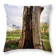 The Cottonwood Throw Pillow