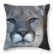 The Cougar 3 Throw Pillow
