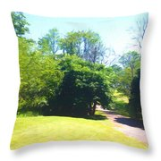 The Country Lane In Spring Time Throw Pillow