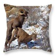 The Coupling Throw Pillow