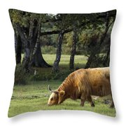 The Creature Of New Forest Throw Pillow