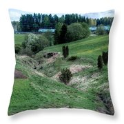 The Creek And River Throw Pillow
