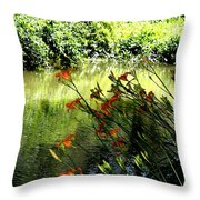 The Creek At The Old Mill Throw Pillow