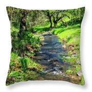 The Creek Throw Pillow