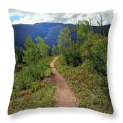 The Crooked Path Throw Pillow
