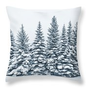 The Crown Of Winter Throw Pillow