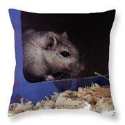 The Crumpet Show Throw Pillow