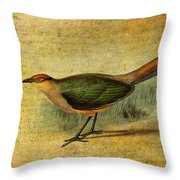 The Cuckoo's Note Throw Pillow