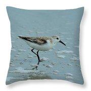The Curious Little Sanderling 2 Throw Pillow
