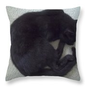 The Curled Black Cat Throw Pillow