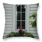 The Curve Window Throw Pillow