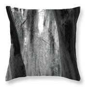 Cypress In The Bayou Throw Pillow