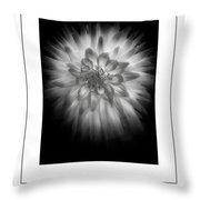 The Dahlia Bw Poster Throw Pillow