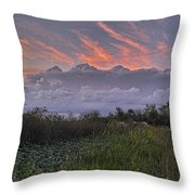 The Daily Disappearing Act Throw Pillow